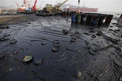 Oil Pollution | Censol